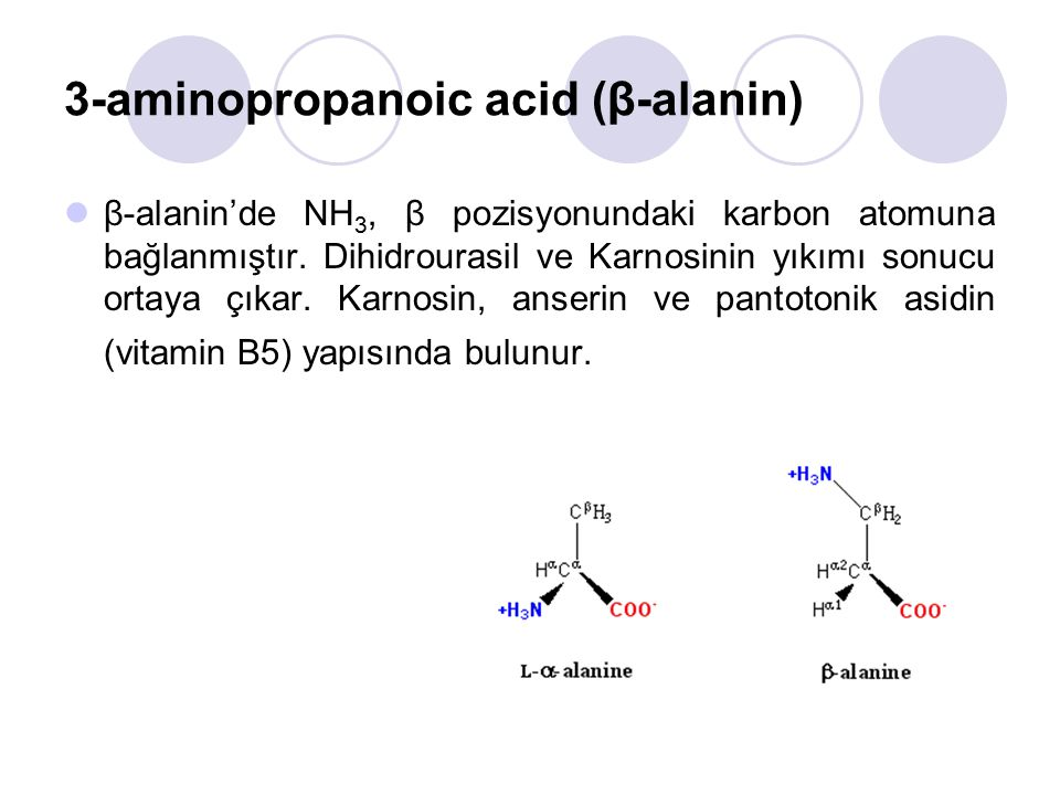 3-aminopropanoic acid (β-alanin)