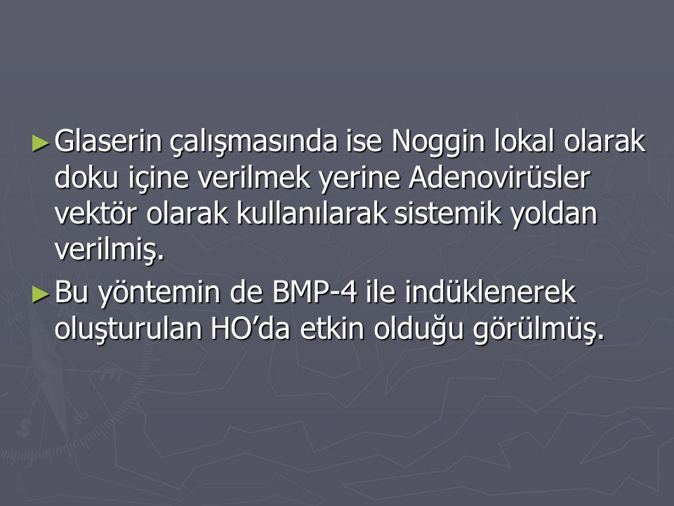 Glaserin çalışmasında ise Noggin lokal olarak doku içine verilmek yerine Adenovirüsler vektör olarak kullanılarak sistemik yoldan verilmiş.