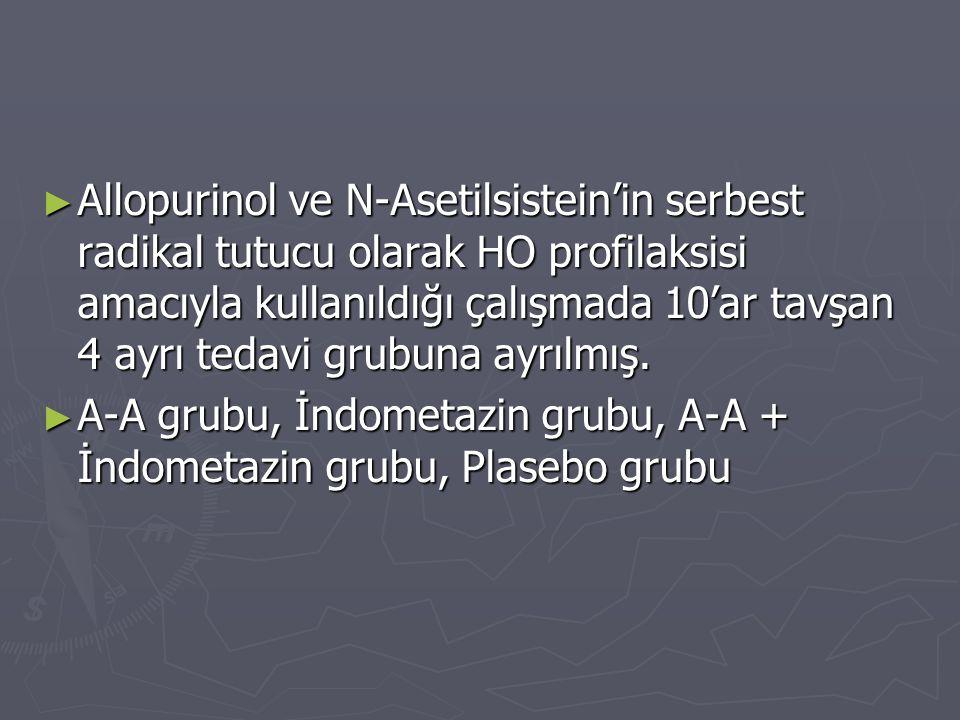 Allopurinol ve N-Asetilsistein'in serbest radikal tutucu olarak HO profilaksisi amacıyla kullanıldığı çalışmada 10'ar tavşan 4 ayrı tedavi grubuna ayrılmış.