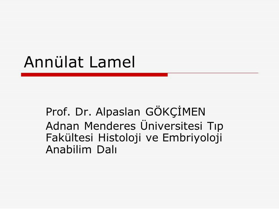Annülat Lamel Prof. Dr. Alpaslan GÖKÇİMEN