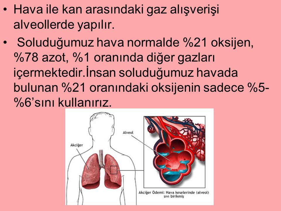 Hava ile kan arasındaki gaz alışverişi alveollerde yapılır.