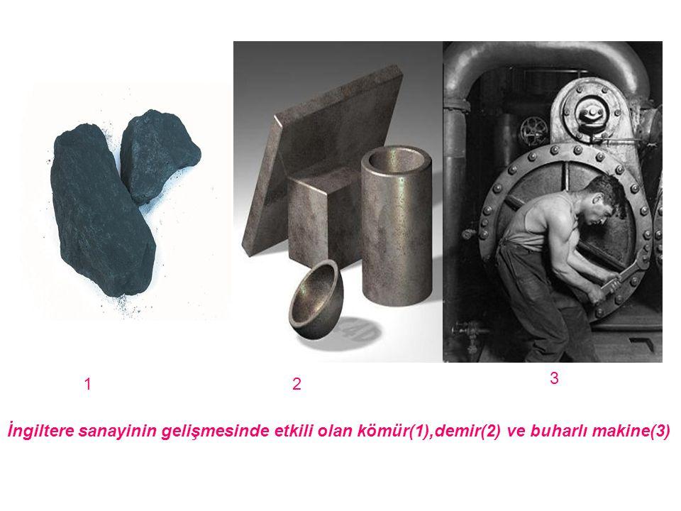 3 1 2 İngiltere sanayinin gelişmesinde etkili olan kömür(1),demir(2) ve buharlı makine(3)