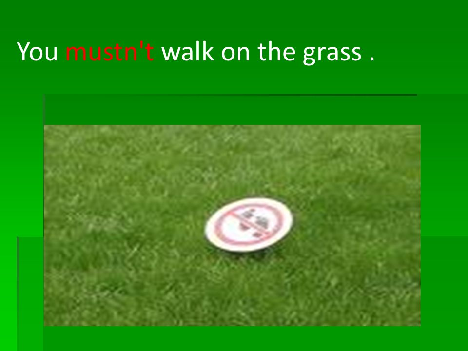 You mustn t walk on the grass .