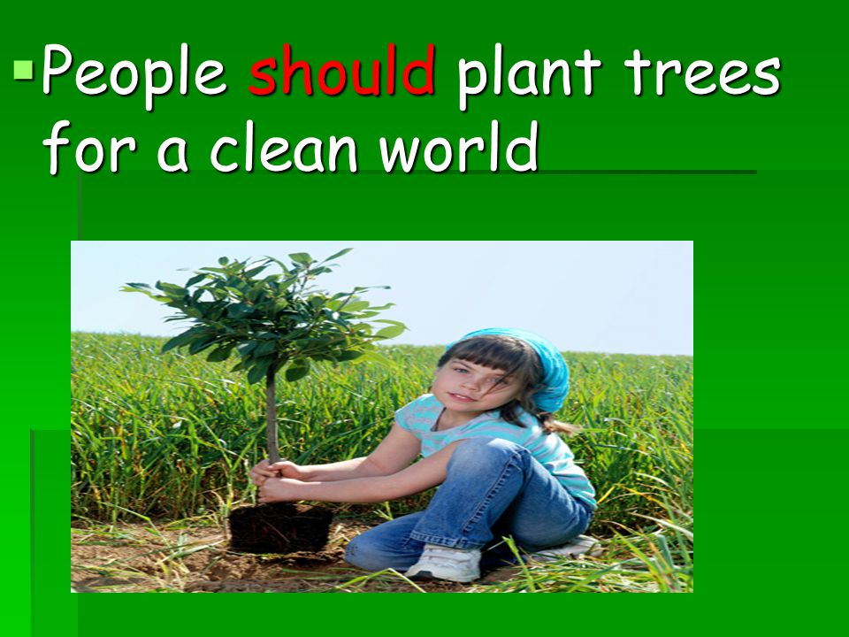 People should plant trees for a clean world
