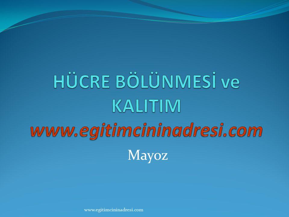 HÜCRE BÖLÜNMESİ ve KALITIM www.egitimcininadresi.com