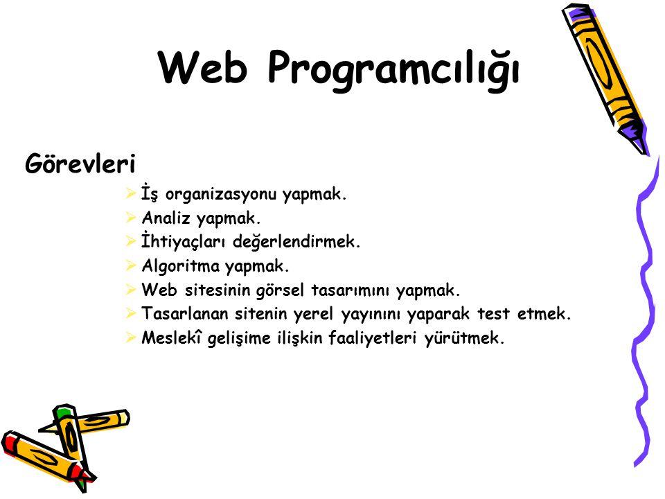 Web Programcılığı Görevleri İş organizasyonu yapmak. Analiz yapmak.
