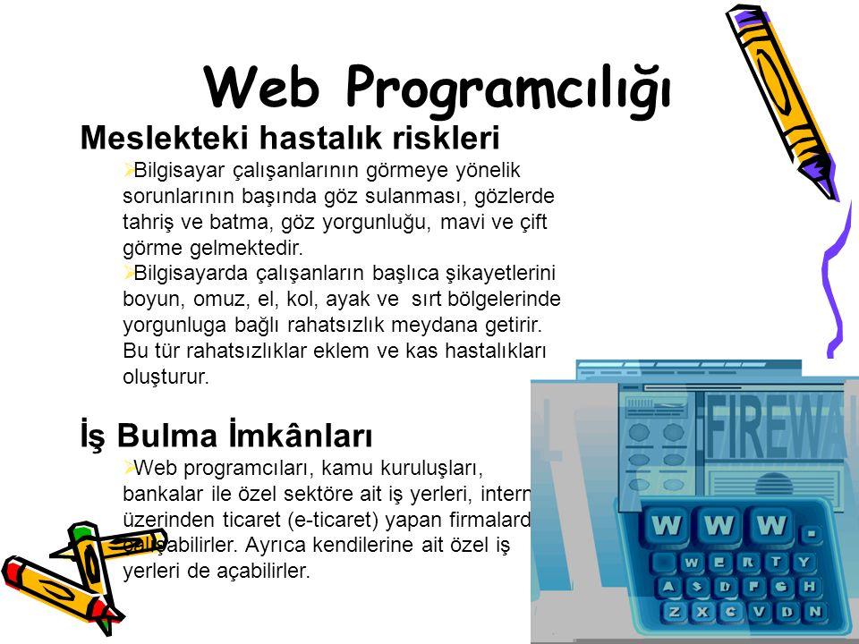 Web Programcılığı Meslekteki hastalık riskleri İş Bulma İmkânları