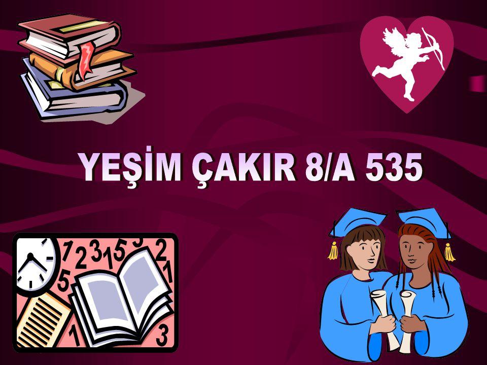 YEŞİM ÇAKIR 8/A 535