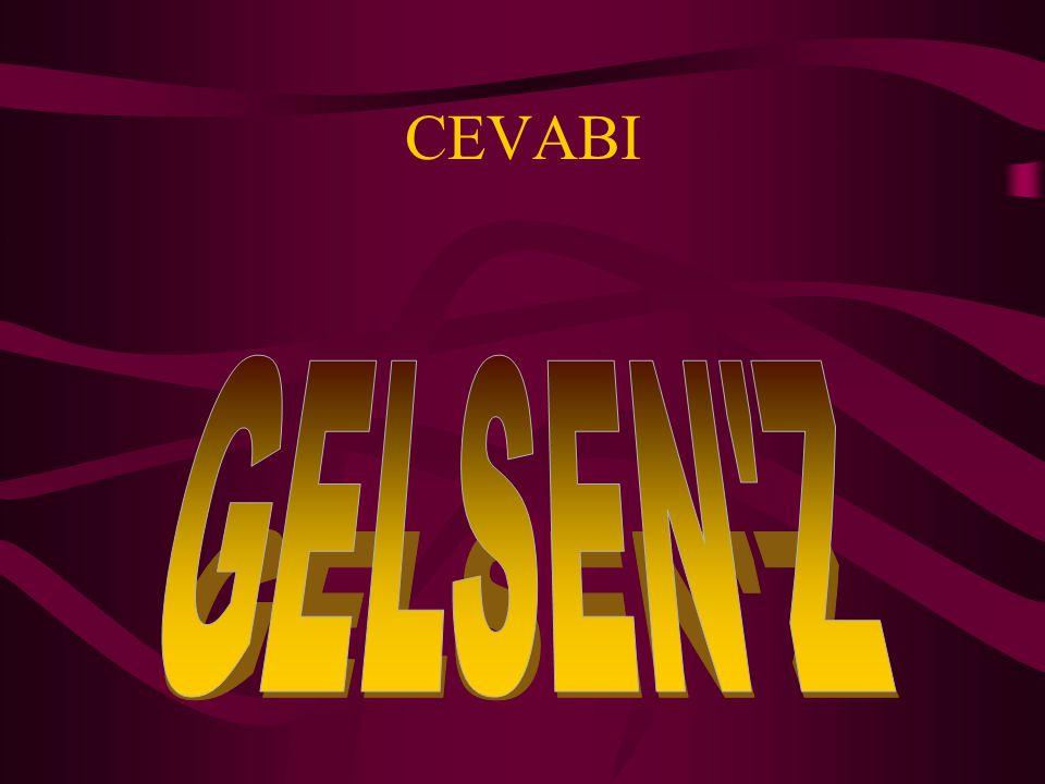 CEVABI GELSEN Z