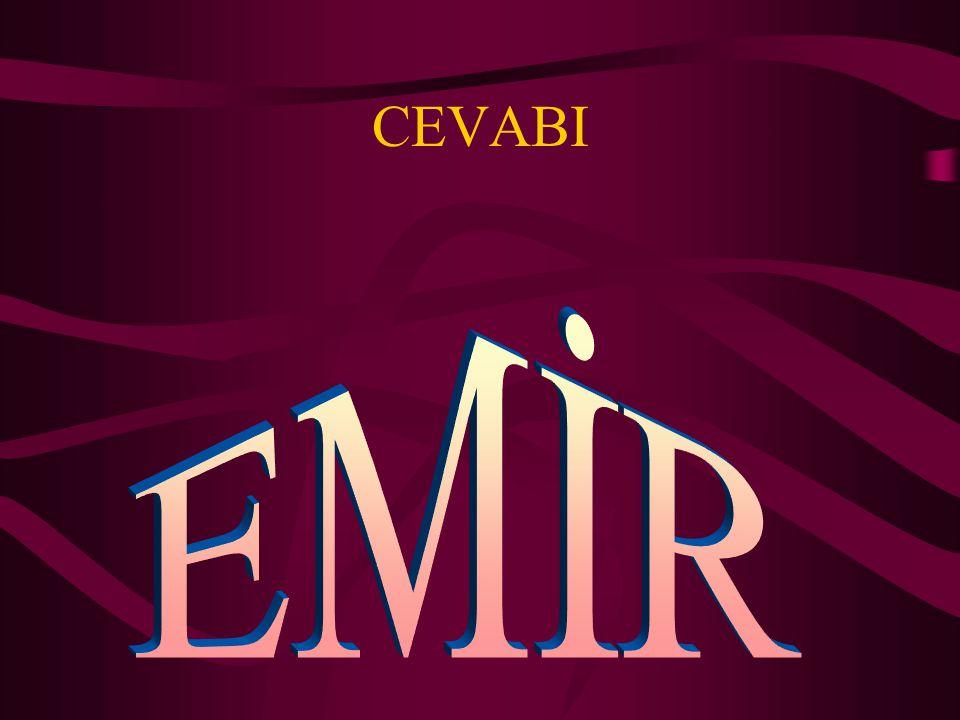 CEVABI EMİR