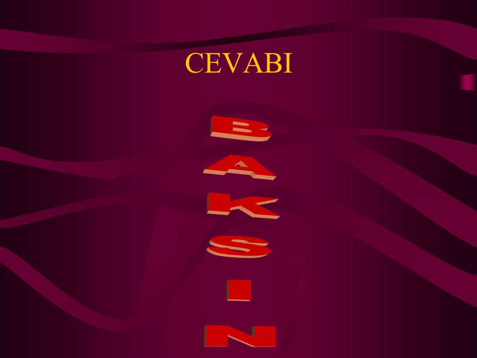 CEVABI BAKSIN