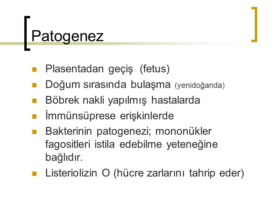 Patogenez Plasentadan geçiş (fetus)