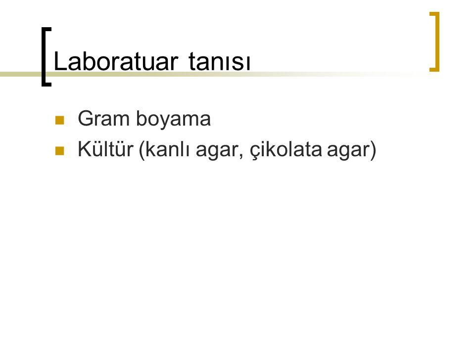 Laboratuar tanısı Gram boyama Kültür (kanlı agar, çikolata agar)