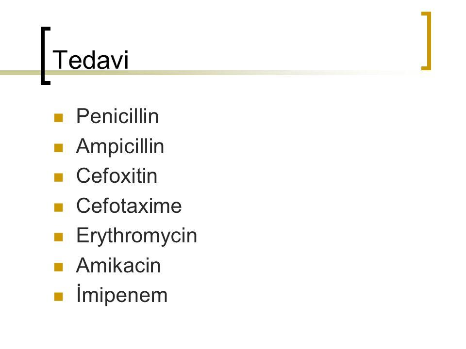 Tedavi Penicillin Ampicillin Cefoxitin Cefotaxime Erythromycin