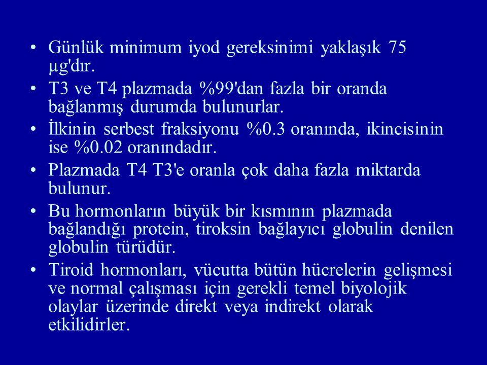 Günlük minimum iyod gereksinimi yaklaşık 75 µg dır.