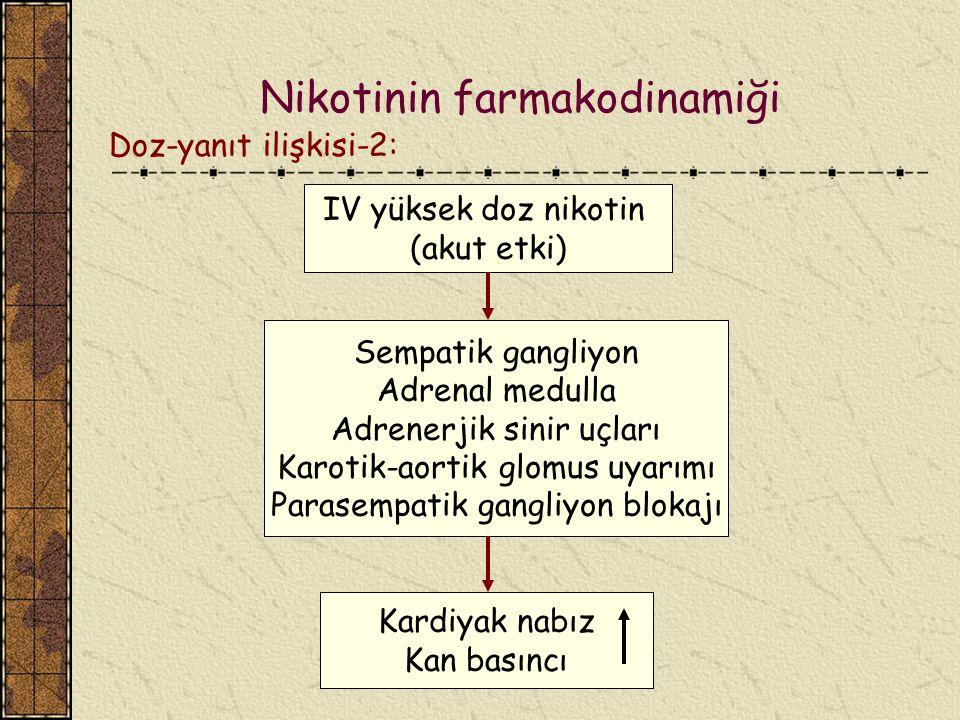 Nikotinin farmakodinamiği
