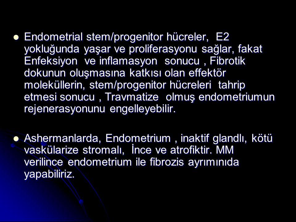 Endometrial stem/progenitor hücreler, E2 yokluğunda yaşar ve proliferasyonu sağlar, fakat Enfeksiyon ve inflamasyon sonucu , Fibrotik dokunun oluşmasına katkısı olan effektör moleküllerin, stem/progenitor hücreleri tahrip etmesi sonucu , Travmatize olmuş endometriumun rejenerasyonunu engelleyebilir.