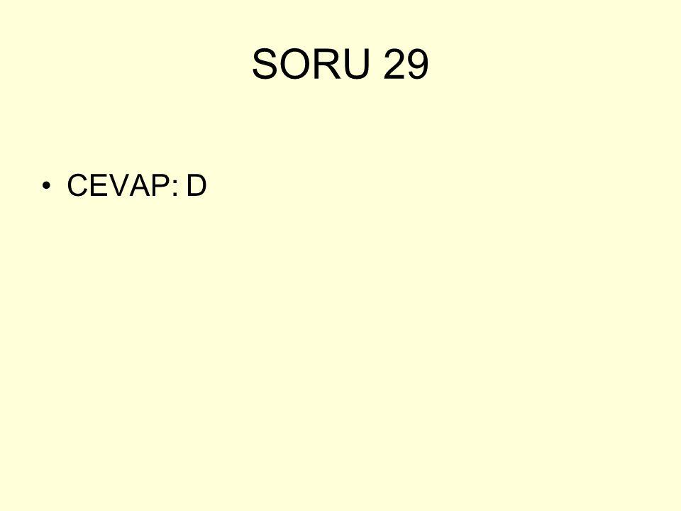 SORU 29 CEVAP: D