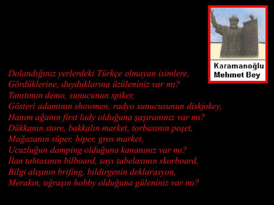 Dolandığınız yerlerdeki Türkçe olmayan isimlere, Gördüklerine, duyduklarına üzüleniniz var mı