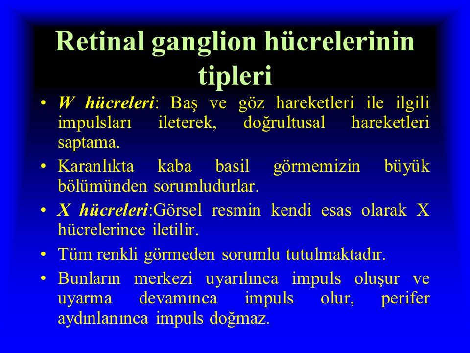 Retinal ganglion hücrelerinin tipleri