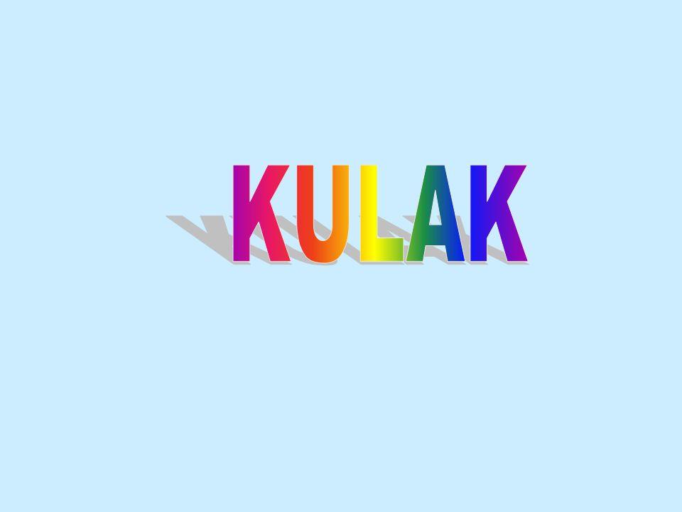 KULAK