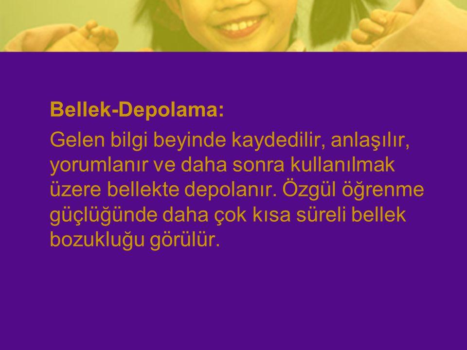 Bellek-Depolama: