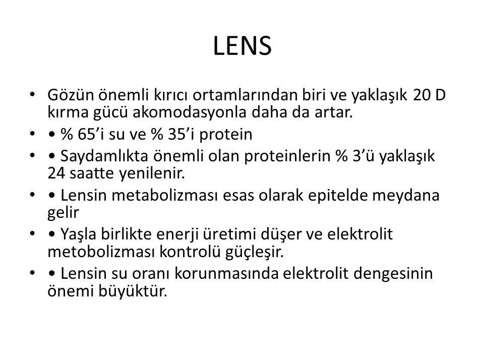 LENS Gözün önemli kırıcı ortamlarından biri ve yaklaşık 20 D kırma gücü akomodasyonla daha da artar.