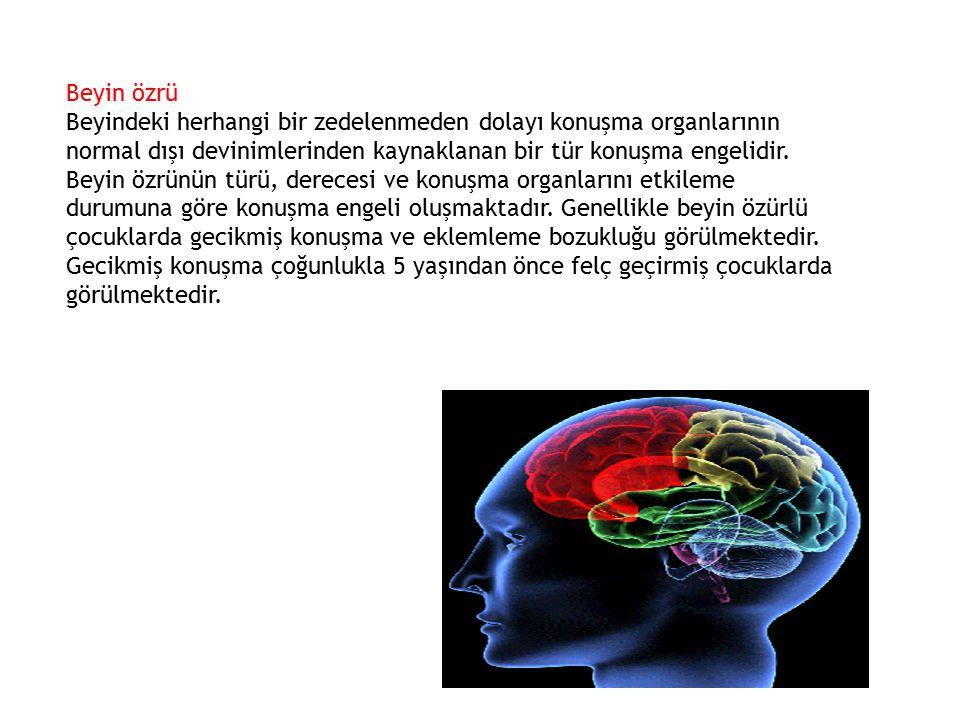 Beyin özrü
