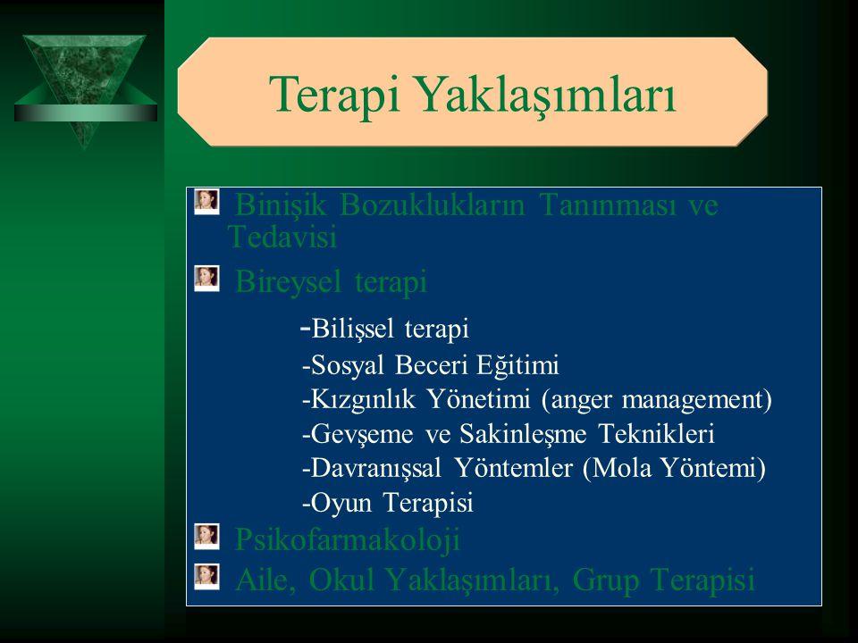 Terapi Yaklaşımları -Bilişsel terapi
