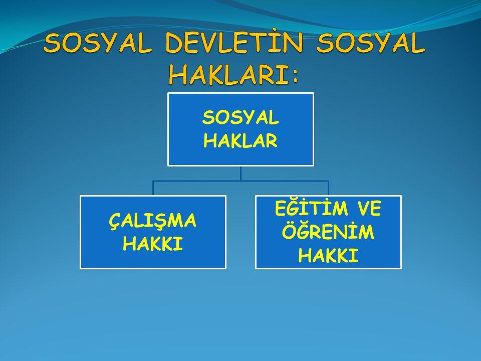 SOSYAL DEVLETİN SOSYAL HAKLARI: