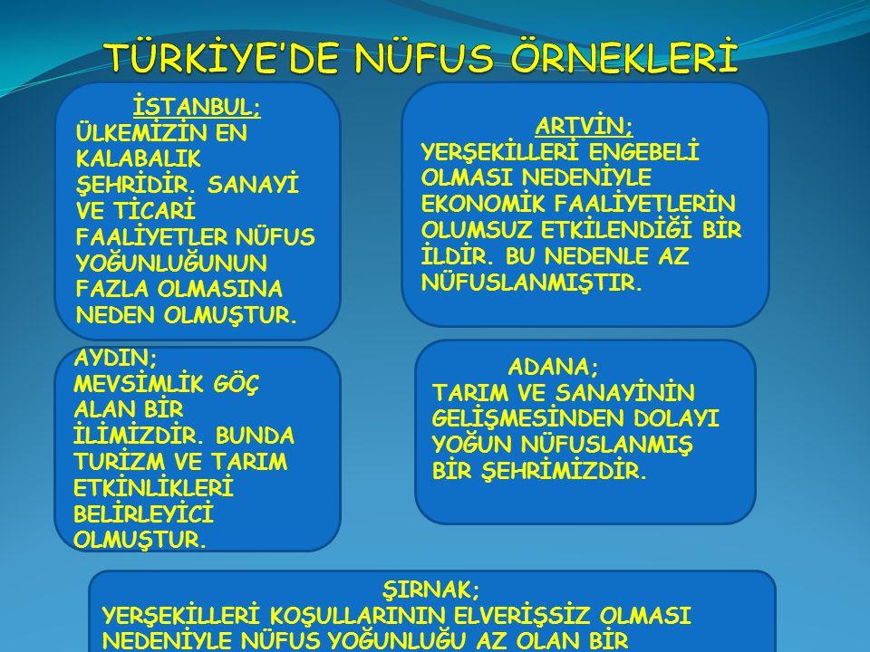 TÜRKİYE'DE NÜFUS ÖRNEKLERİ