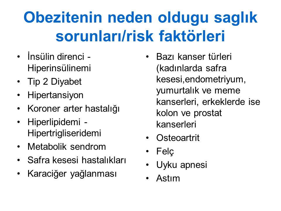 Obezitenin neden oldugu saglık sorunları/risk faktörleri