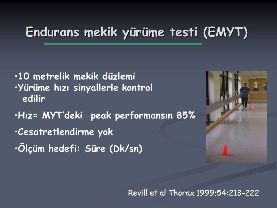 Endurans mekik yürüme testi (EMYT)