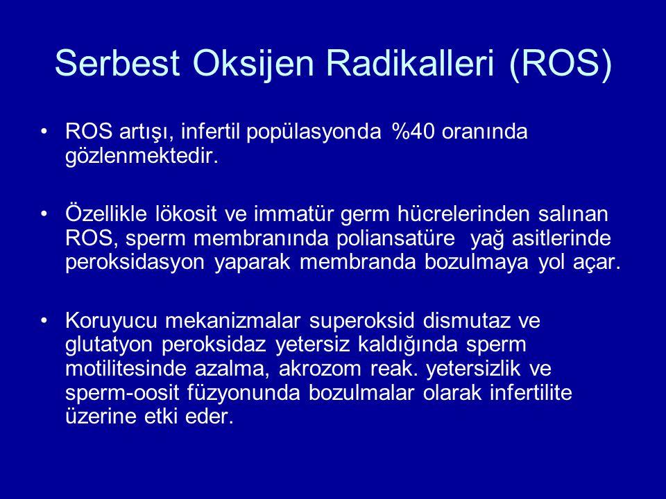 Serbest Oksijen Radikalleri (ROS)