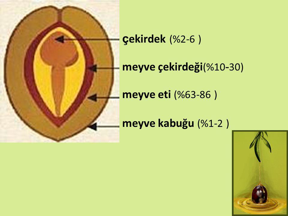 çekirdek (%2-6 ) meyve çekirdeği(%10-30) meyve eti (%63-86 ) meyve kabuğu (%1-2 )