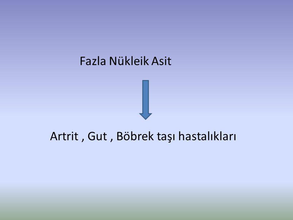Fazla Nükleik Asit Artrit , Gut , Böbrek taşı hastalıkları