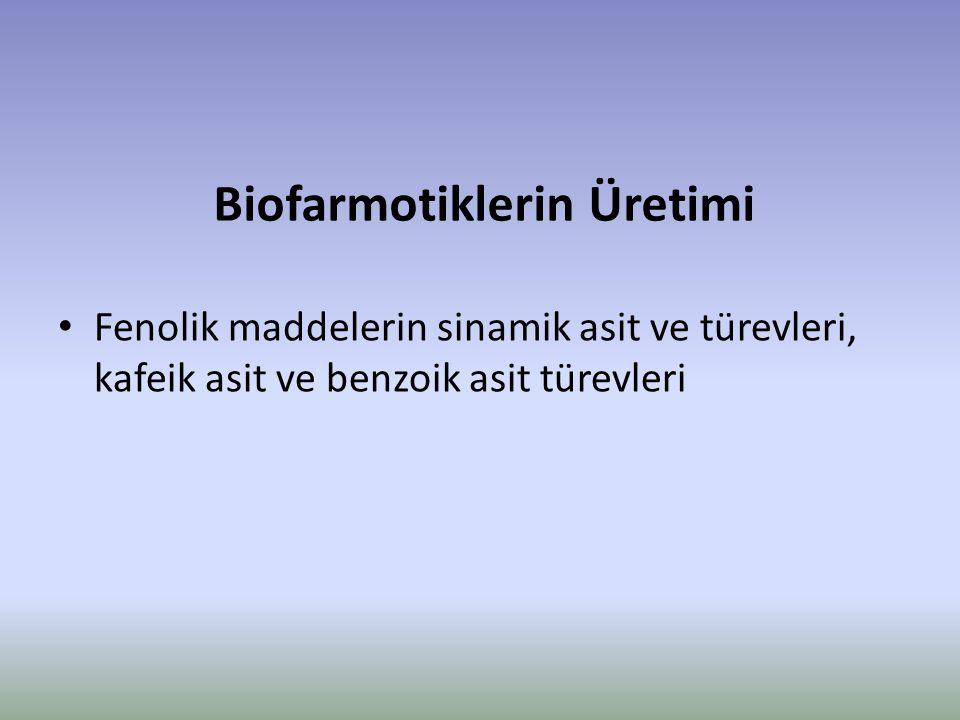 Biofarmotiklerin Üretimi