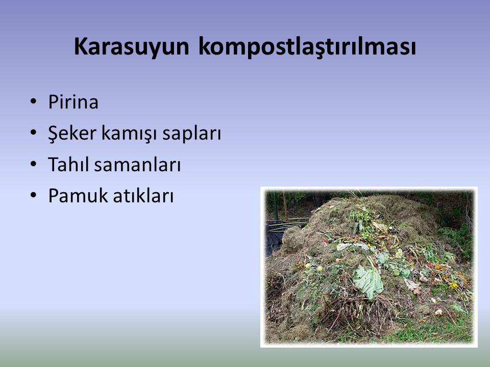 Karasuyun kompostlaştırılması
