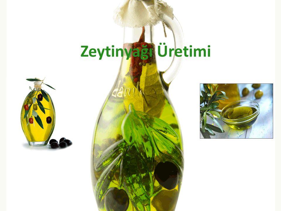 Zeytinyağı Üretimi