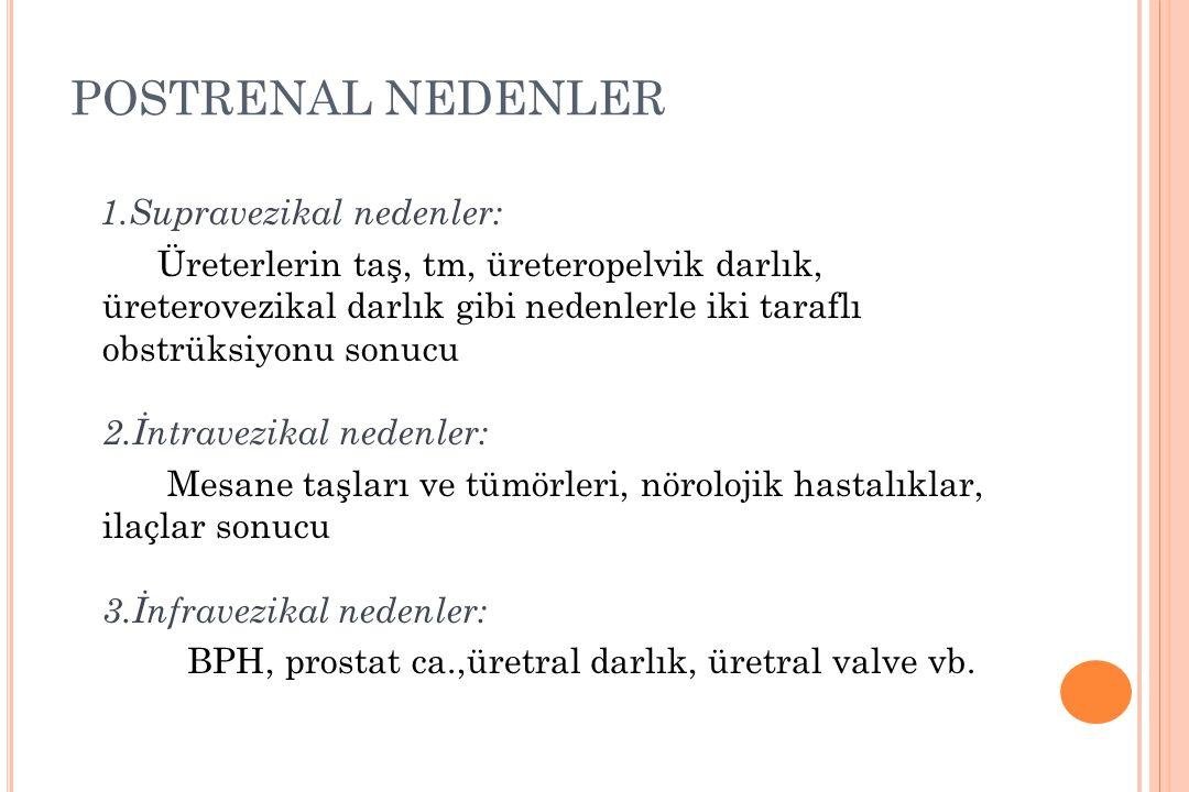POSTRENAL NEDENLER