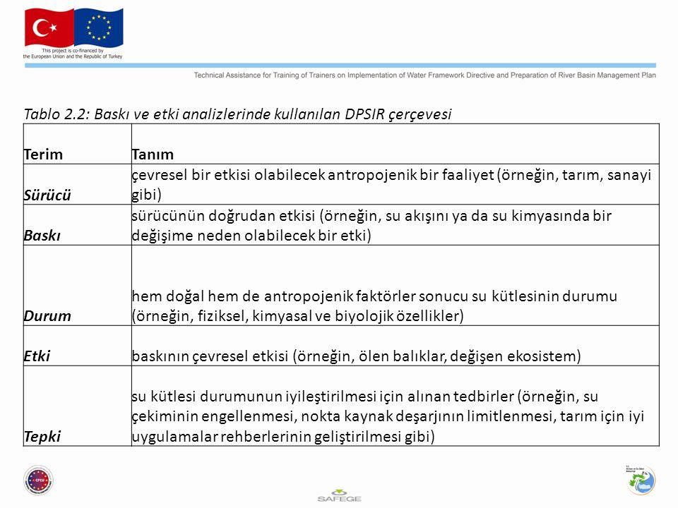 Tablo 2.2: Baskı ve etki analizlerinde kullanılan DPSIR çerçevesi