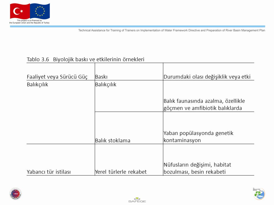 Tablo 3.6 Biyolojik baskı ve etkilerinin örnekleri