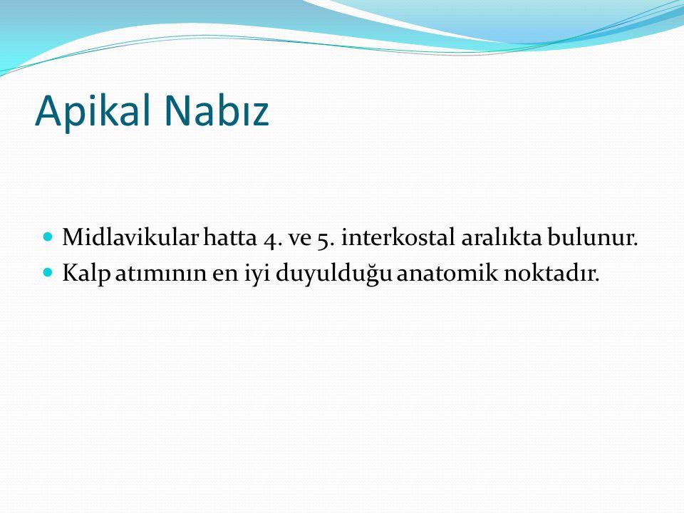 Apikal Nabız Midlavikular hatta 4. ve 5. interkostal aralıkta bulunur.