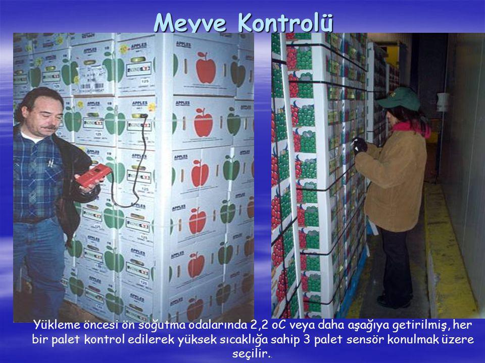 Meyve Kontrolü