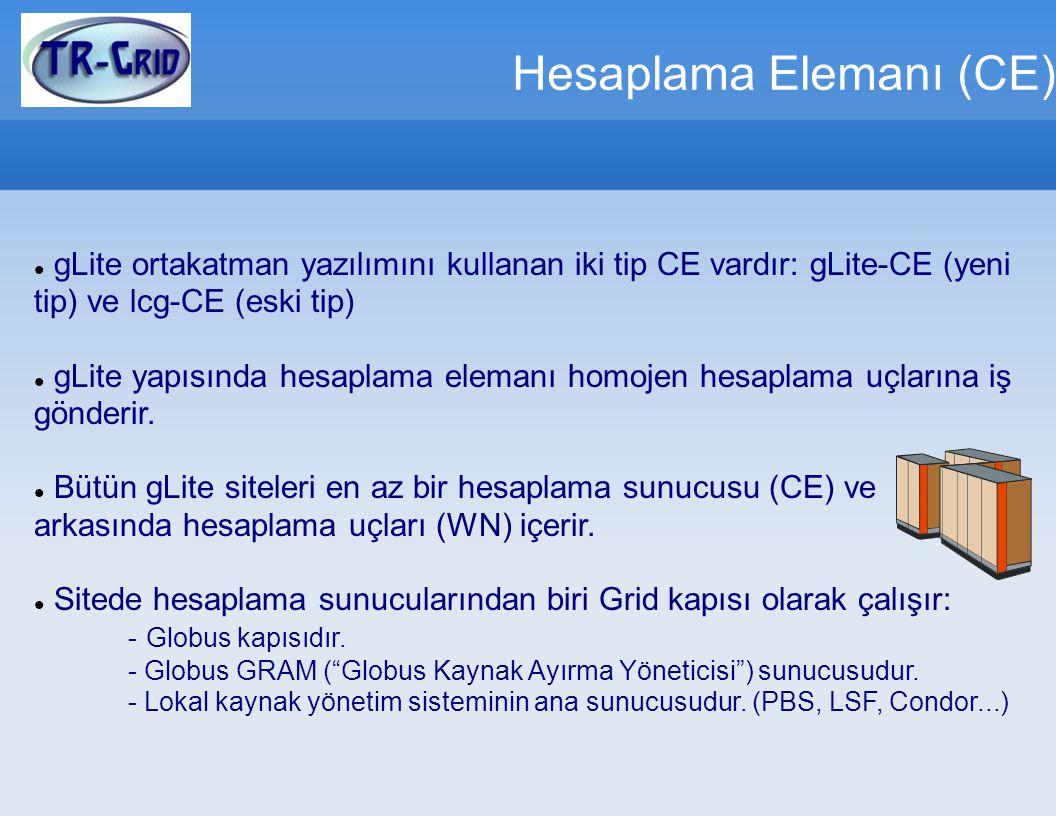 Hesaplama Elemanı (CE)