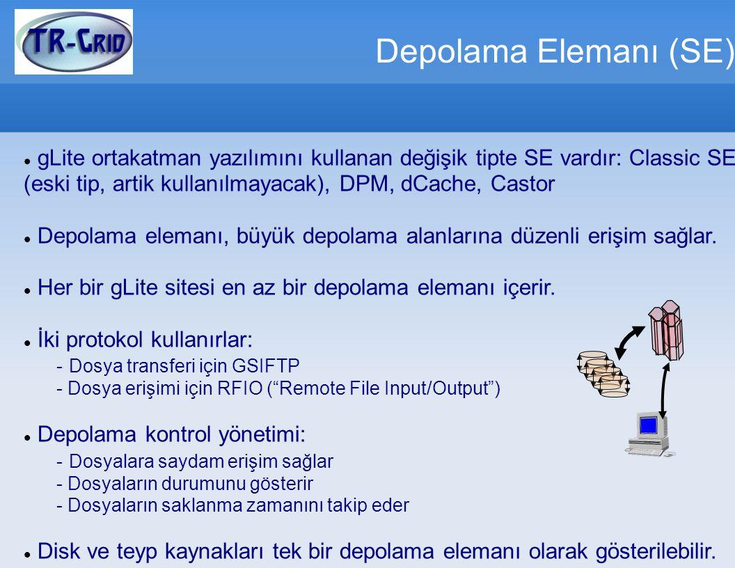 Depolama Elemanı (SE) gLite ortakatman yazılımını kullanan değişik tipte SE vardır: Classic SE (eski tip, artik kullanılmayacak), DPM, dCache, Castor.