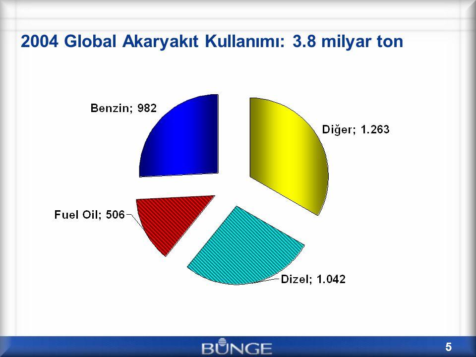 2004 Global Akaryakıt Kullanımı: 3.8 milyar ton