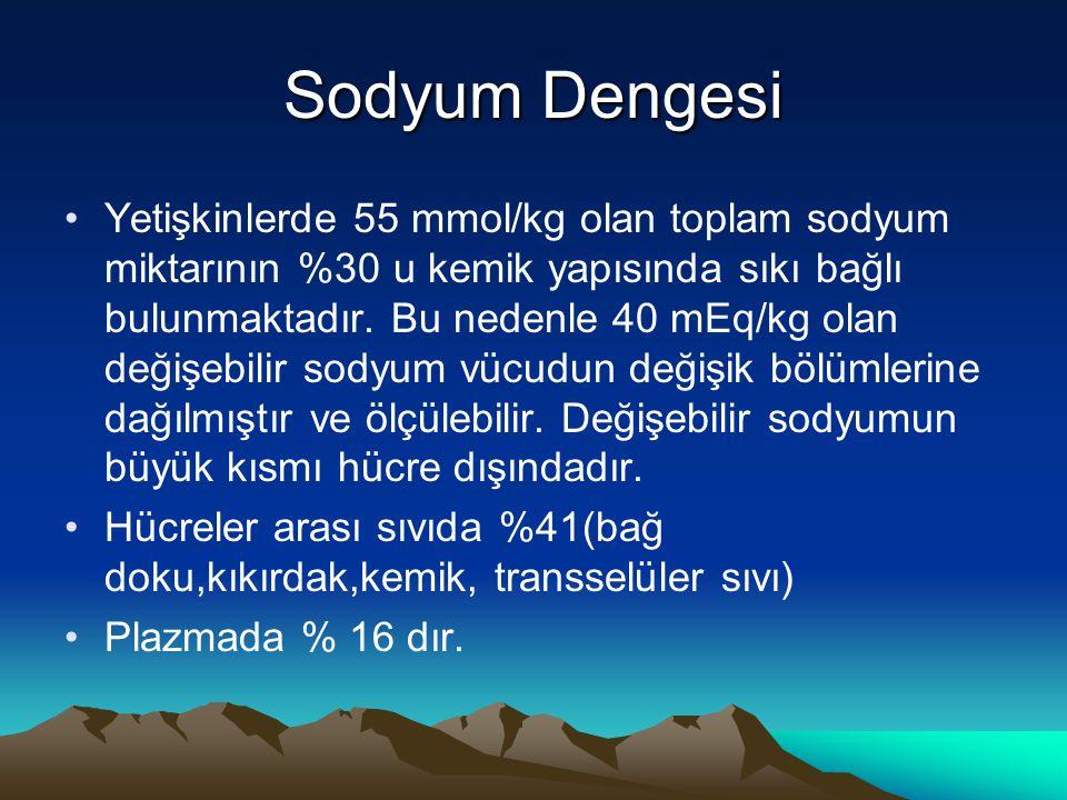 Sodyum Dengesi