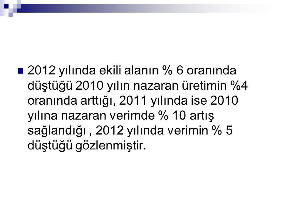 2012 yılında ekili alanın % 6 oranında düştüğü 2010 yılın nazaran üretimin %4 oranında arttığı, 2011 yılında ise 2010 yılına nazaran verimde % 10 artış sağlandığı , 2012 yılında verimin % 5 düştüğü gözlenmiştir.