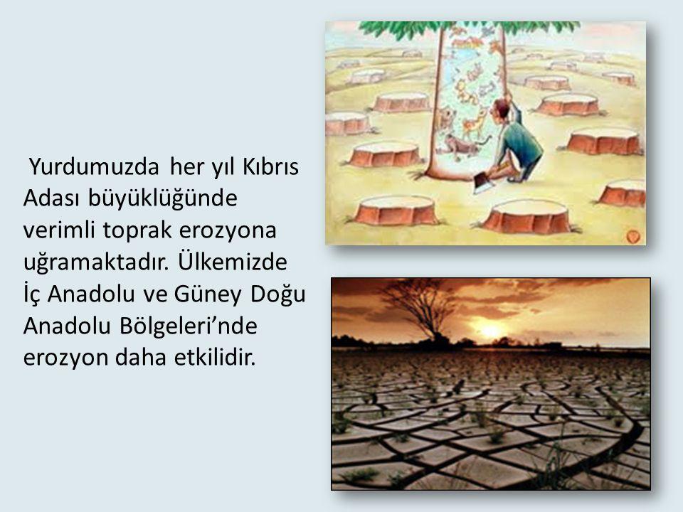 Yurdumuzda her yıl Kıbrıs Adası büyüklüğünde verimli toprak erozyona uğramaktadır.